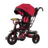 City Ride Trike (1)